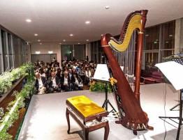 Concertosolidario